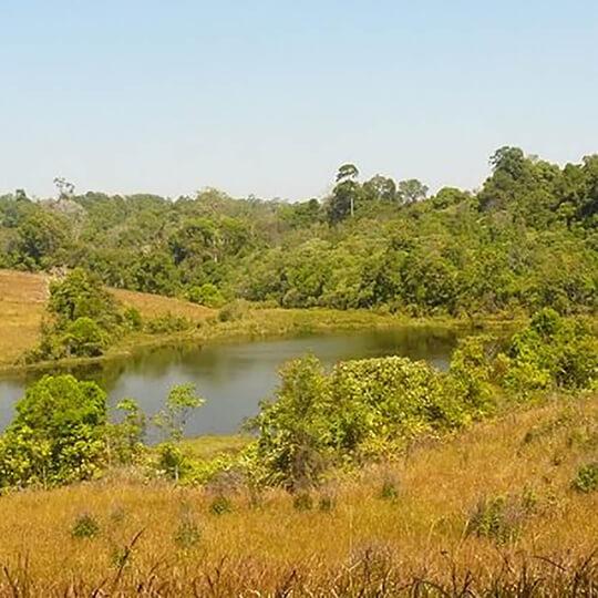 Vorschaubild zu Khao-Yai-Nationalpark