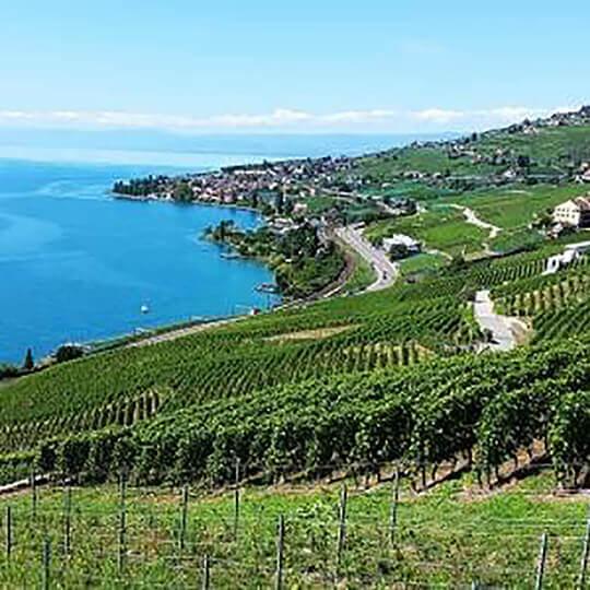 UNESCO-Weinterrassen von Lavaux