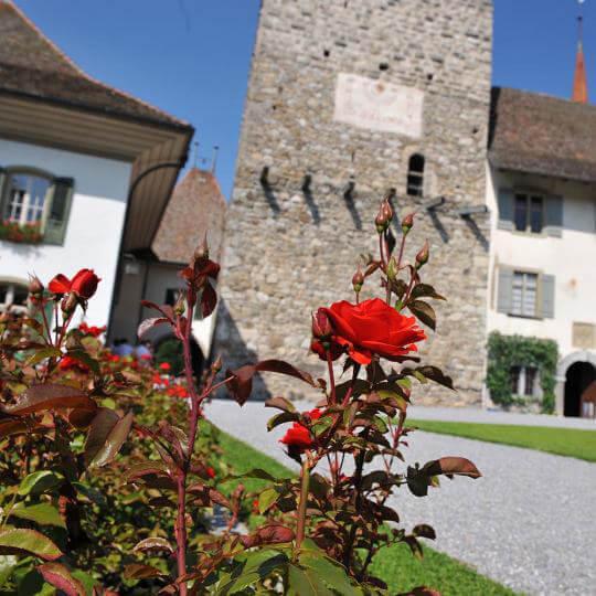 Schloss Spiez 10