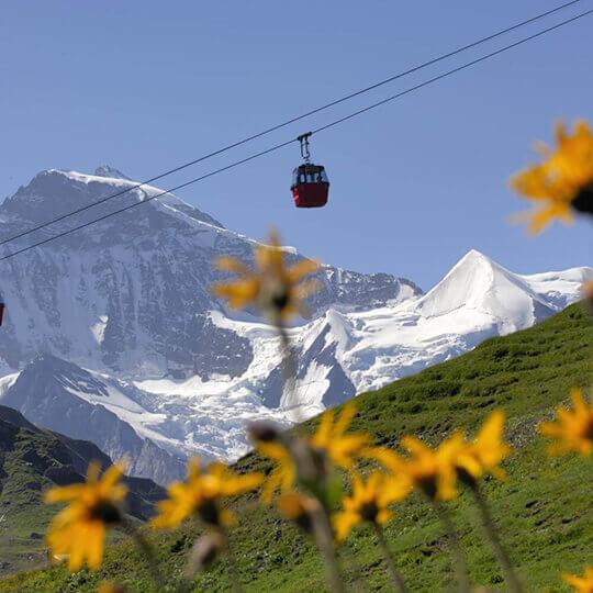 Vorschaubild zu Gondelbahn Grindelwald Männlichen