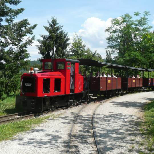 Baumschulbahn Schinznach 10
