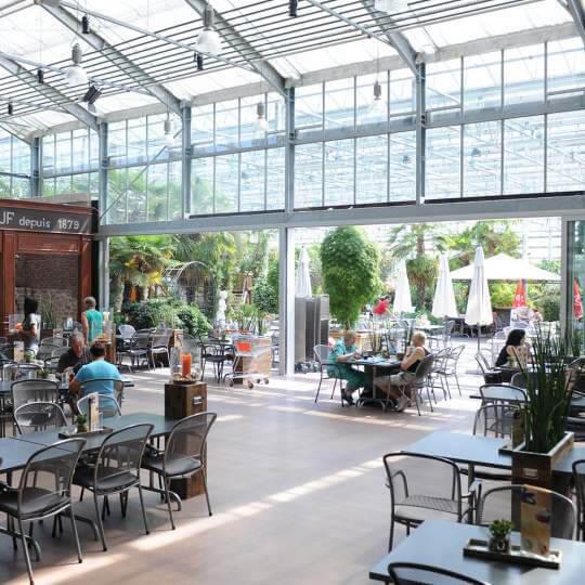 Garten- und Bonsaicenter Zulauf - Die grüne Quelle 10