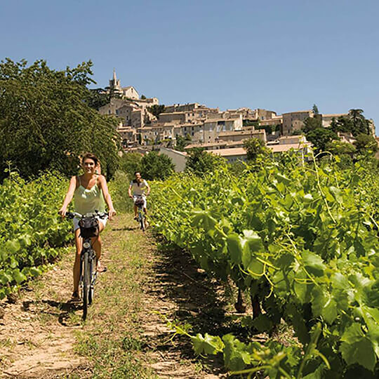 Vorschaubild zu Radreisen durch die Ardèche-Schlucht
