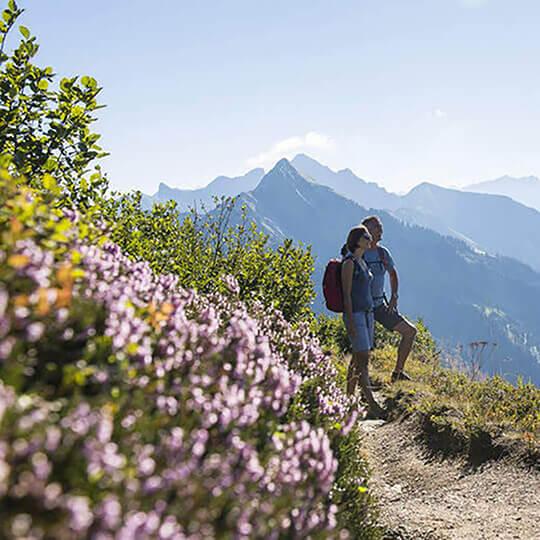 Vorschaubild zu Der Biosphärenpark Grosses Walsertal - die Natur erleben