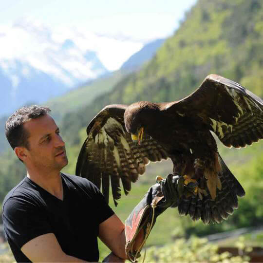 Gufyland - Pflegezentrum für Vogelfauna Schloss Tirol 10