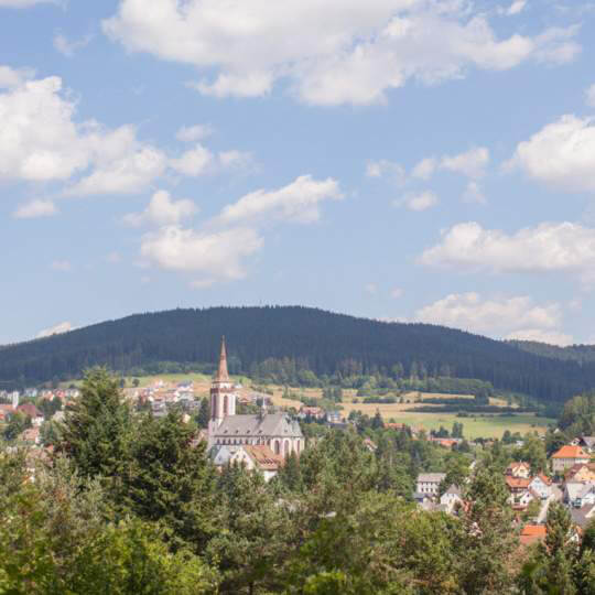 Titisee-Neustadt im Hochschwarzwald 10