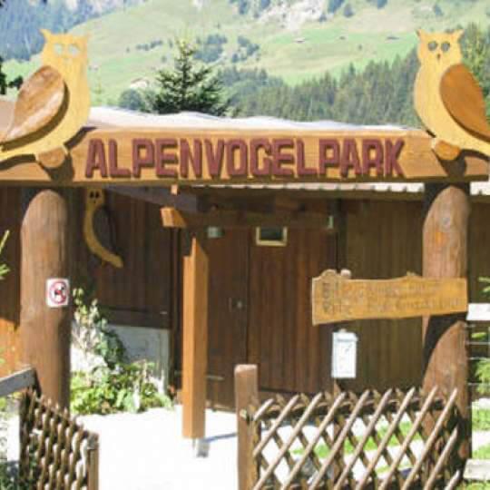 Alpenvogelpark Grindelwald 10