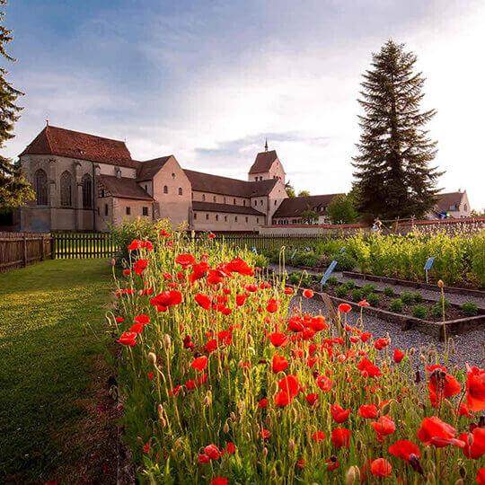 Vorschaubild zu Klosterinsel Reichenau UNESCO Weltkulturerbe