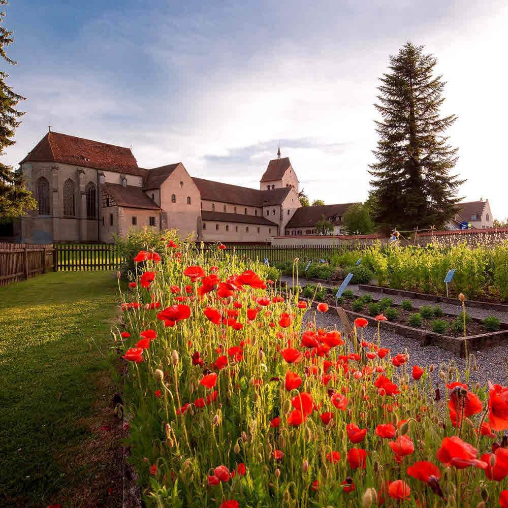 Klosterinsel Reichenau UNESCO Weltkulturerbe 10