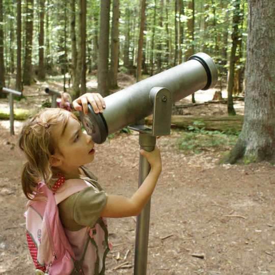 Nationalpark Bayerischer Wald 10