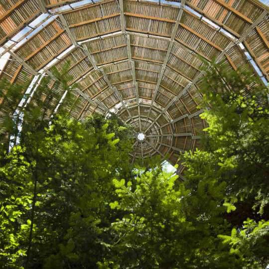 Der Baumwipfelpfad im Bayerischen Wald 10