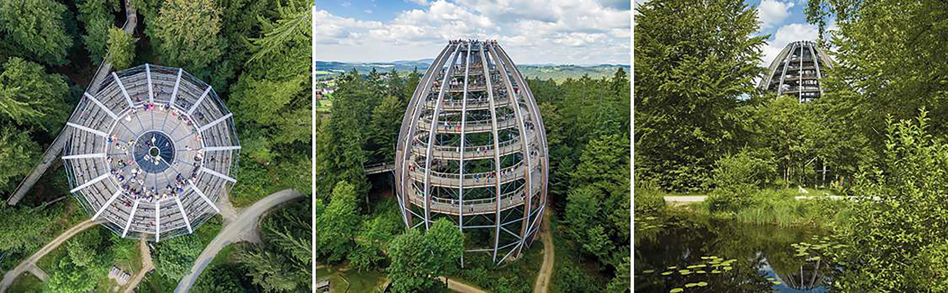 Der Baumwipfelpfad im Bayerischen Wald 1