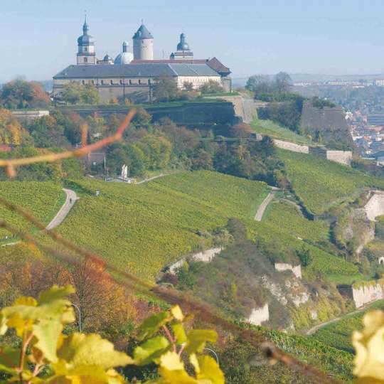 Festung Marienberg und das Museum für Franken - Würzburg 10