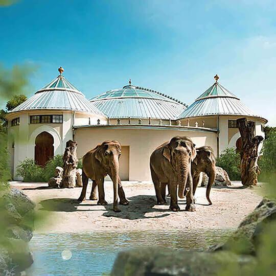Vorschaubild zu Tierpark Hellabrunn München