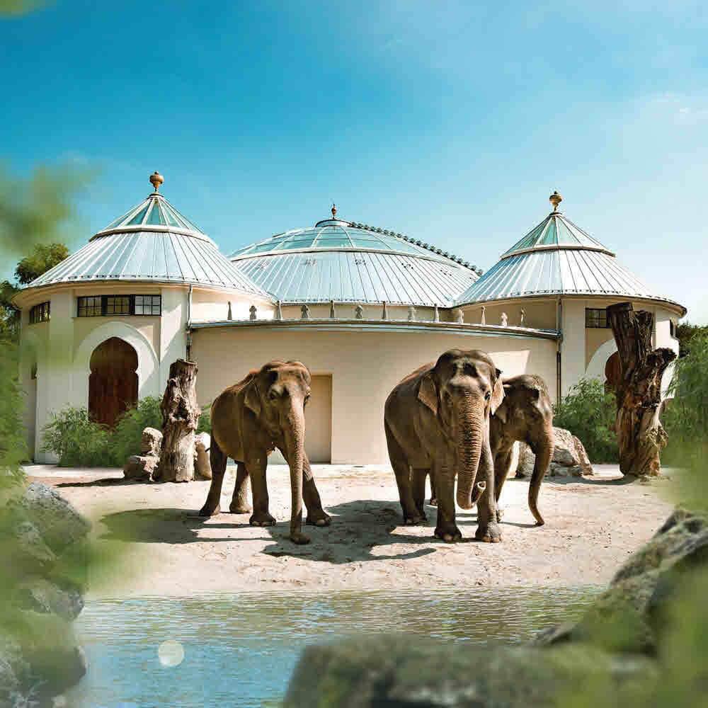 Tierpark Hellabrunn München  10