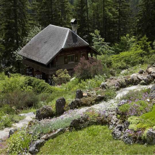 Der botanische Alpengarten Flore-Alpe Champex-Lac 10