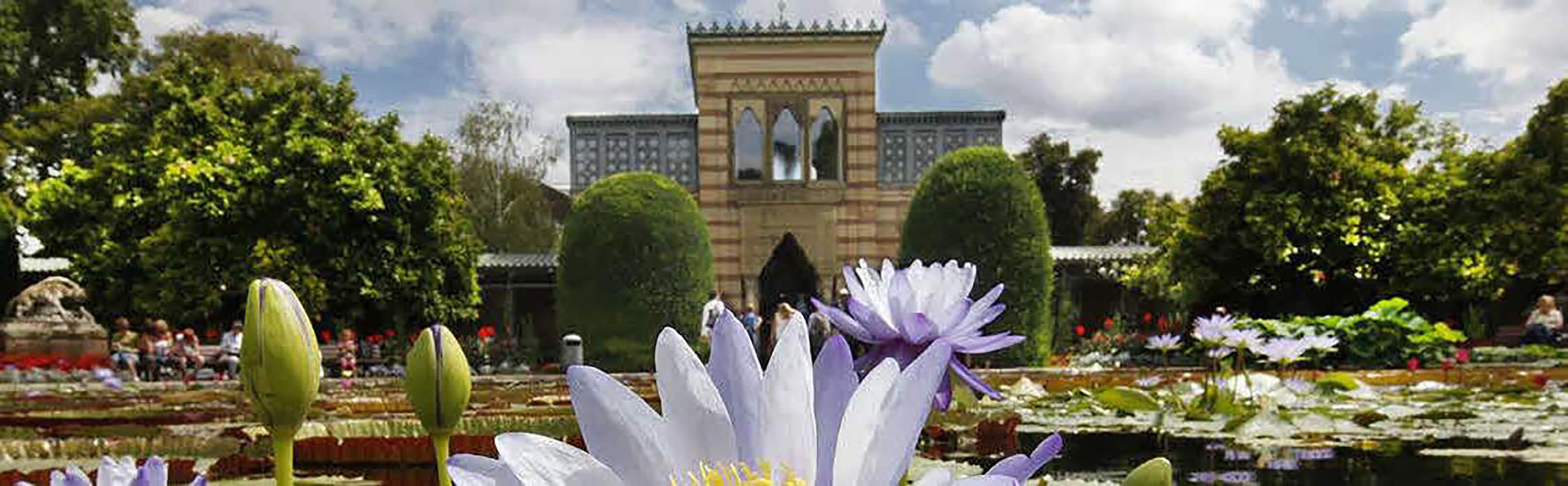 Die Wilhelma - zoologischer und botanischer Garten Stuttgart 1
