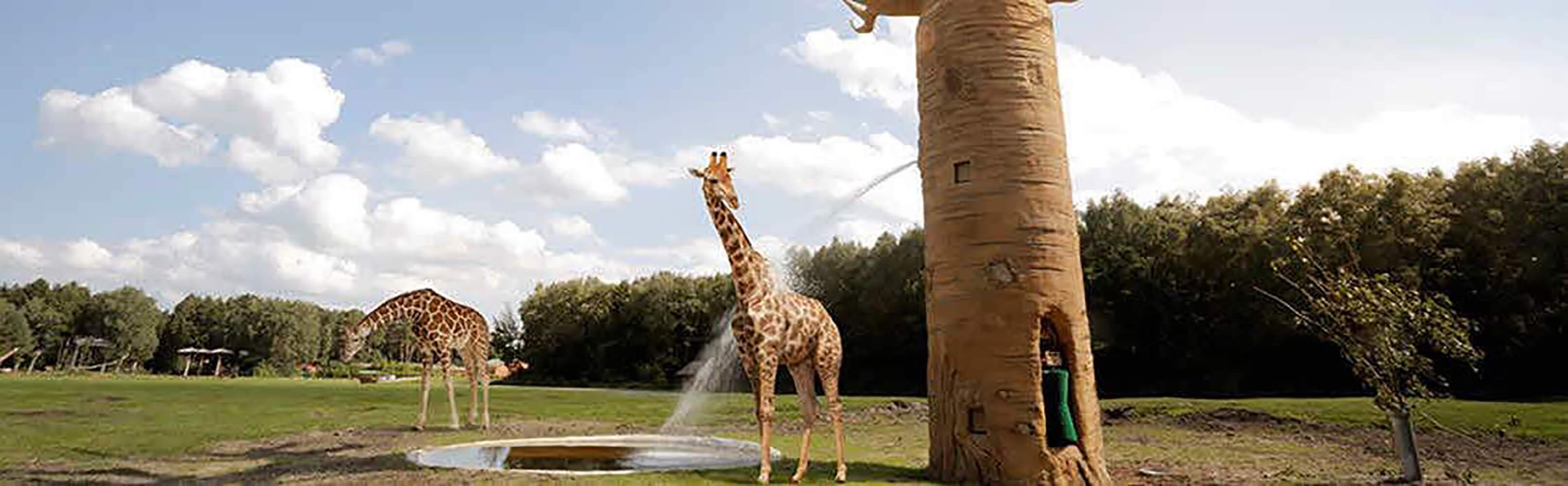 Serengeti-Park Hodenhagen 1