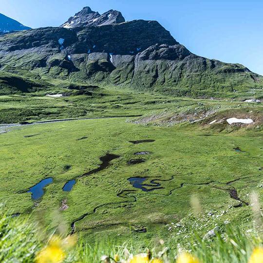 Vorschaubild zu Val Lumnezia – Ferienregion Surselva