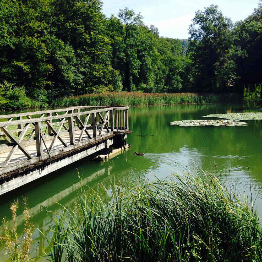 Die Ermitage Arlesheim