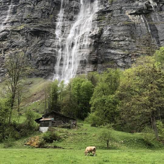 Mürrenbachfall, Lauterbrunnen 10