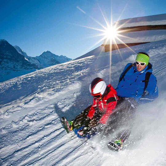 Vorschaubild zu Schlittelweg Bussalp bei Grindelwald