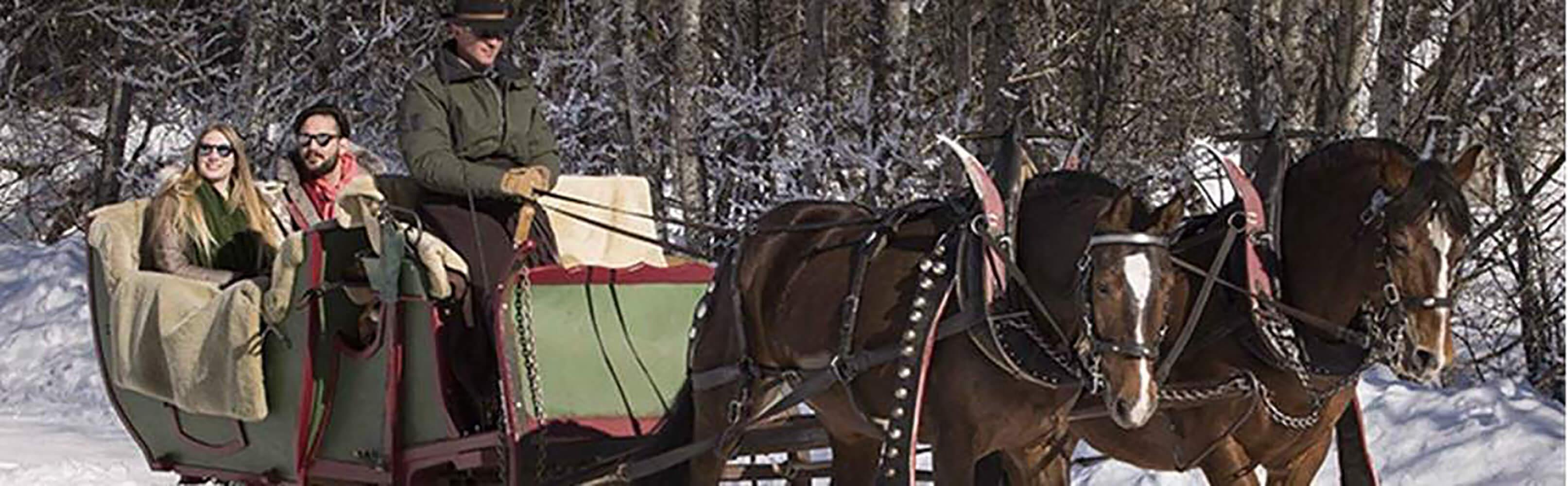 Pferdeschlittenfahrt zum Lauenensee 1