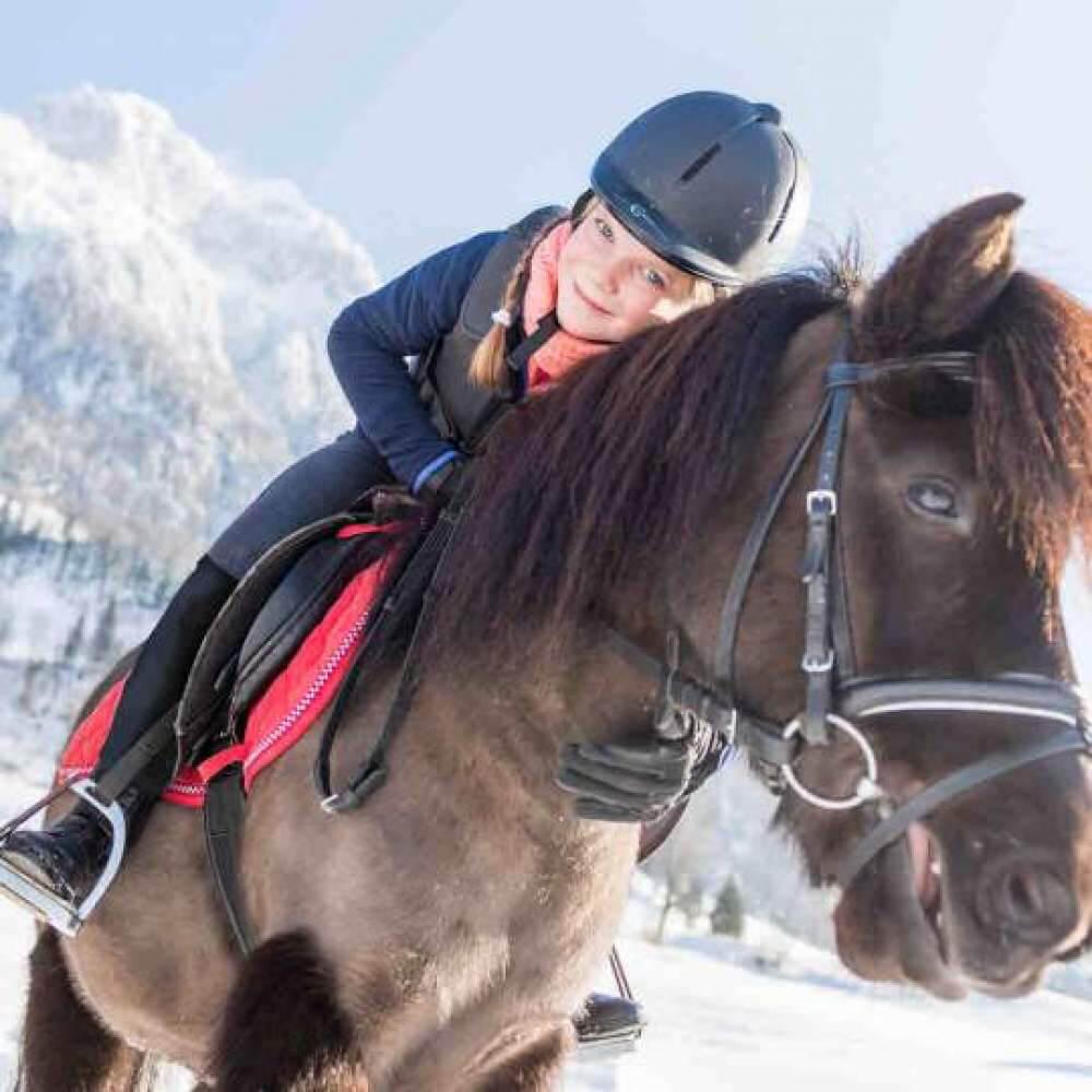 Vorschaubild zu Swiss Holiday Park - Erlebnishof Fronalp