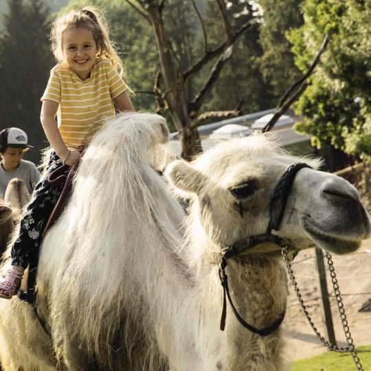 Abenteuerland Walter Zoo Gossau 10