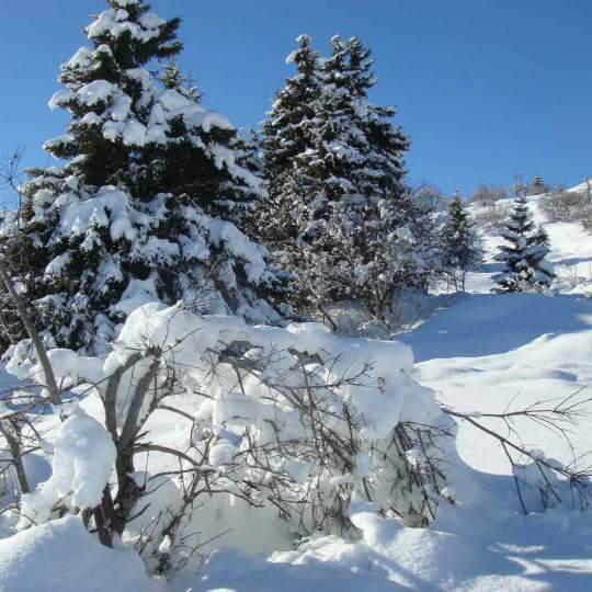 Schneeschuhwandern im Tal des Lichts 10