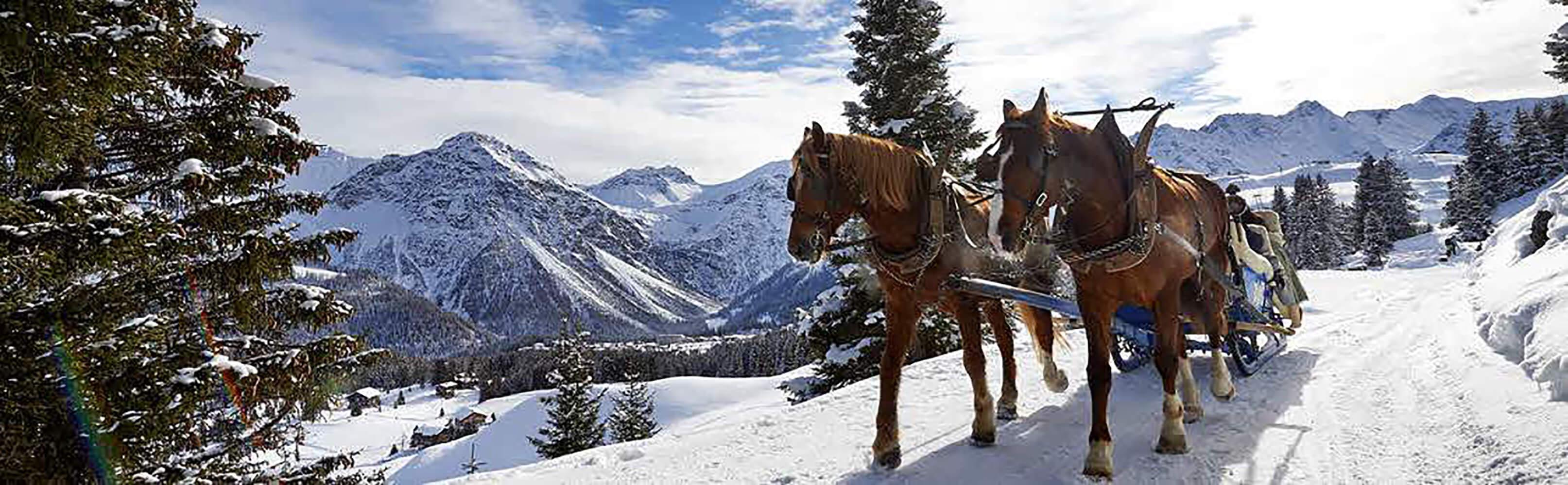 Pferdeschlittenfahrt Arosa 1