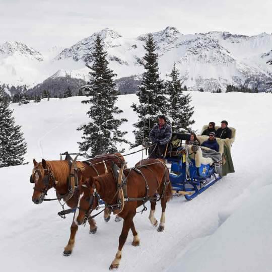 Pferdeschlittenfahrt Arosa 10