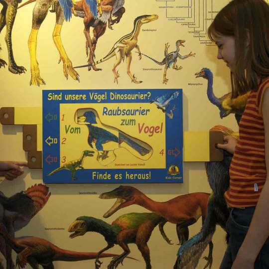 Sauriermuseum Aathal 10