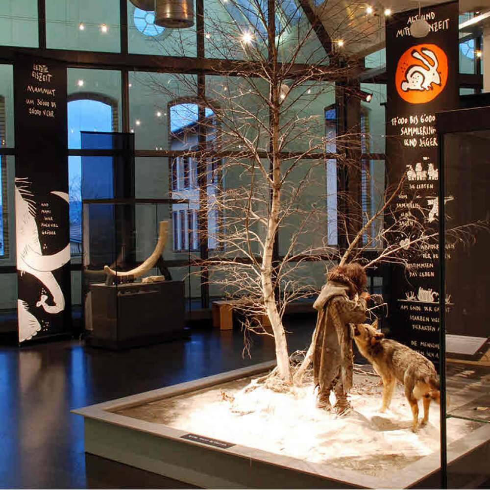 Museum für Urgeschichte(n) Zug 10