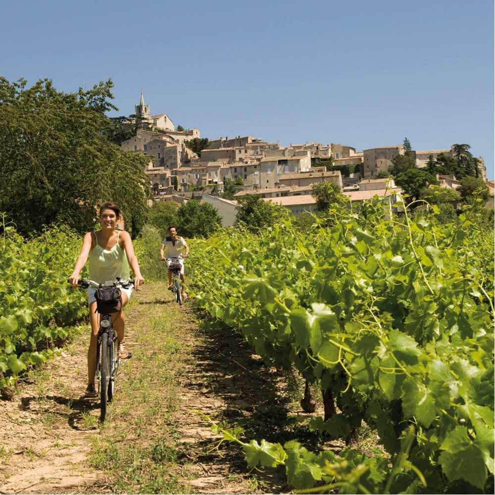 Radreisen durch die Provence und die Camargue 10