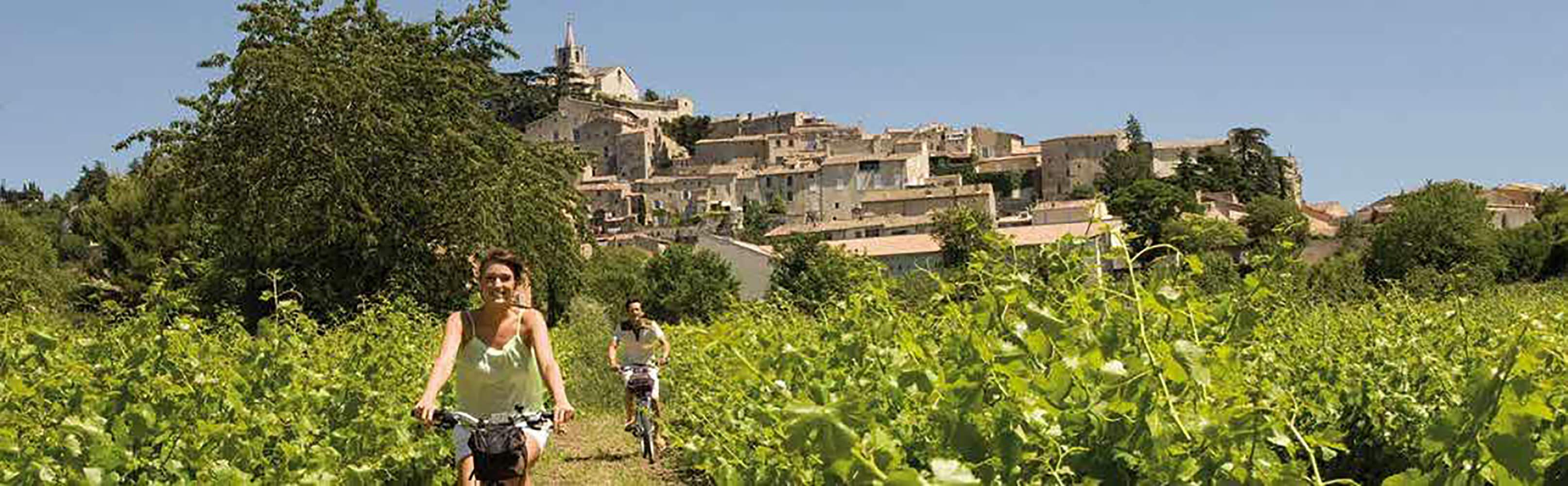 Radreisen durch die Provence und die Camargue 1