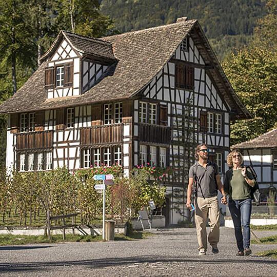 Vorschaubild zu Ballenberg, Freilichtmuseum der Schweiz