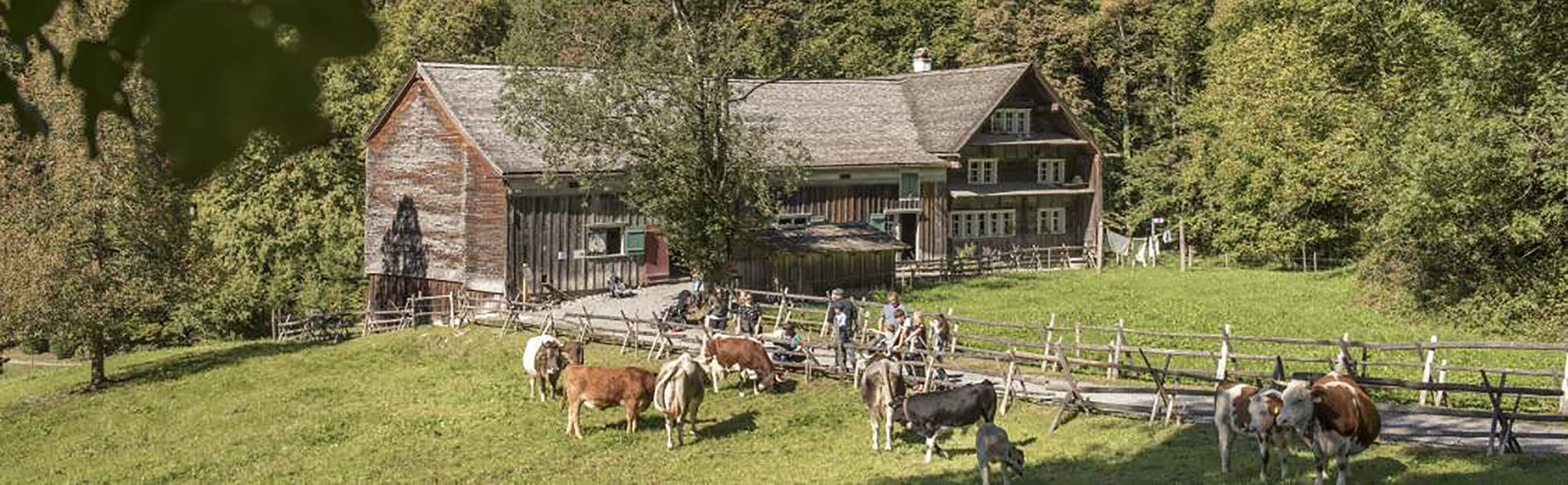 Ballenberg, Freilichtmuseum der Schweiz 1