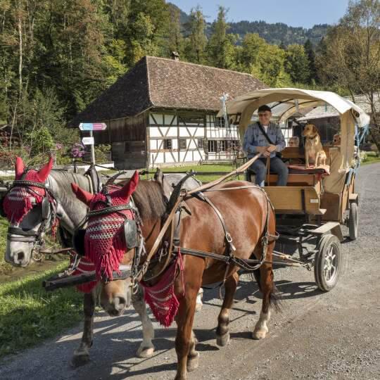 Ballenberg, Freilichtmuseum der Schweiz 10
