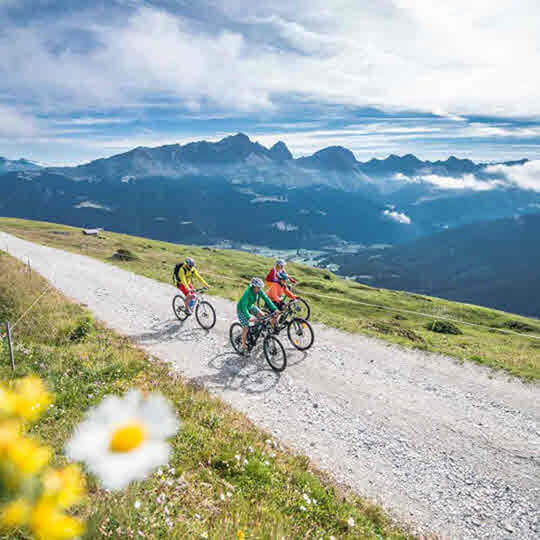 Vorschaubild zu Savognin Bergbahnen AG