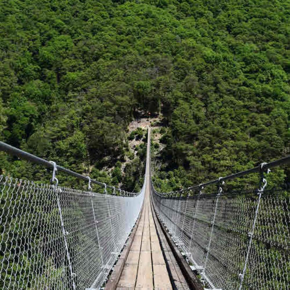 Tibetanische Brücke Monte Carasso