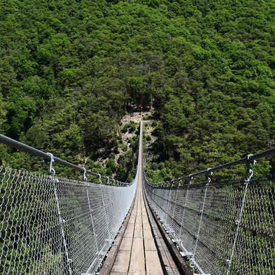Vorschaubild zu Tibetanische Brücke Monte Carasso