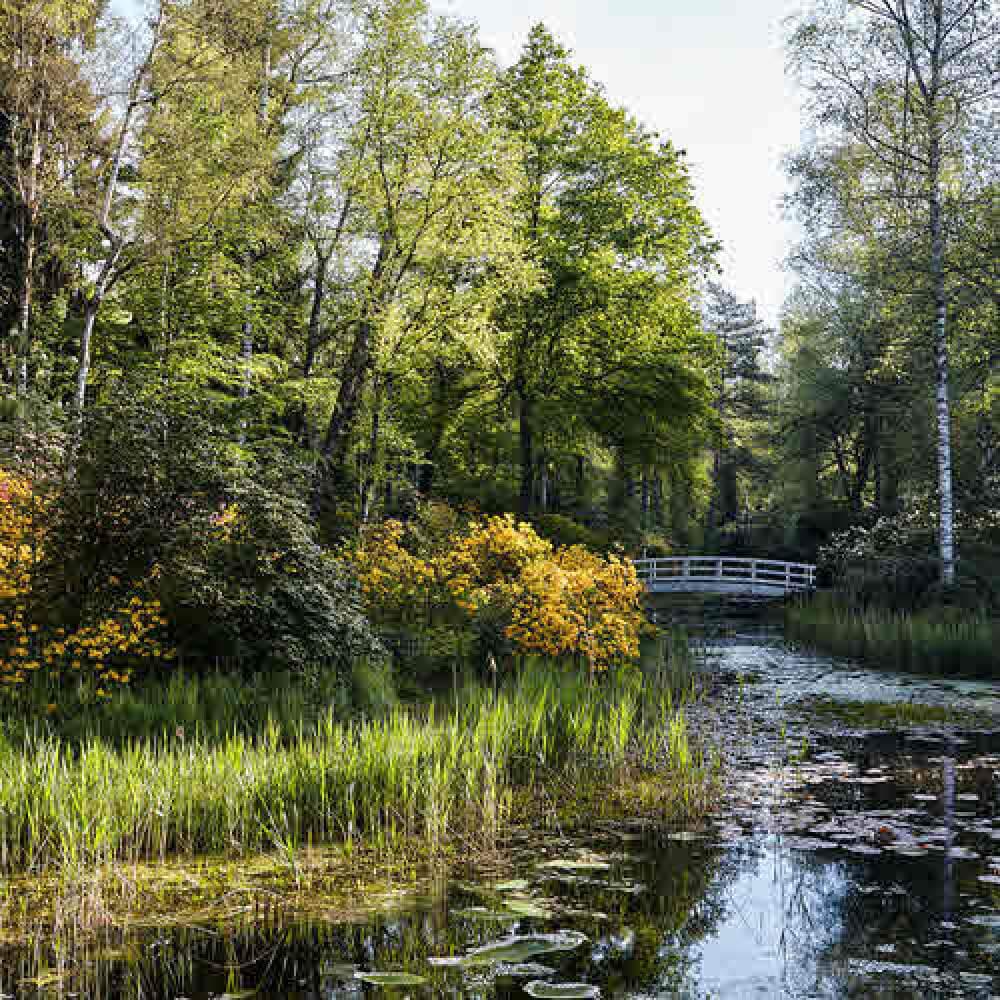 Rifferswil, Park Seleger Moor - Mehr als ein Naturparadies