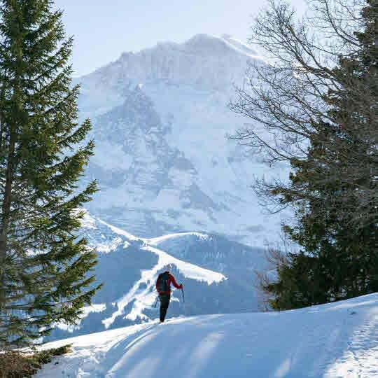 Interlaken - Wintererlebnisse, rasant bis romantisch 10
