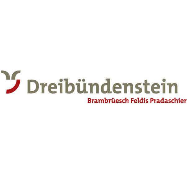 Logo zu Schneeschuh-Arena Dreibündenstein