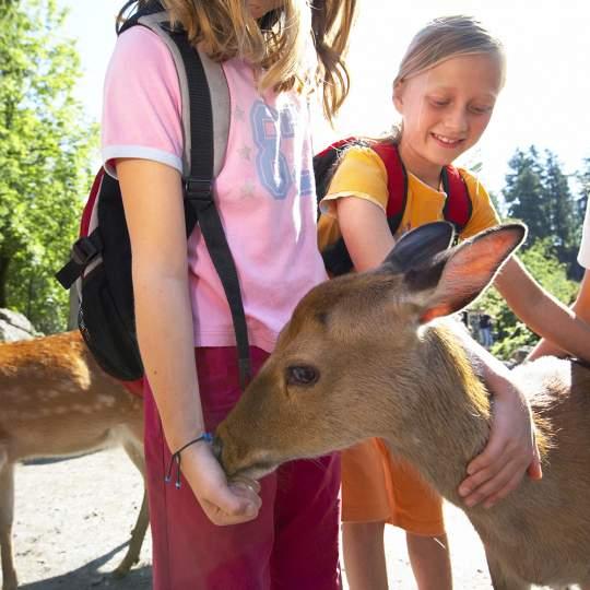 Natur- und Tierpark Goldau 10