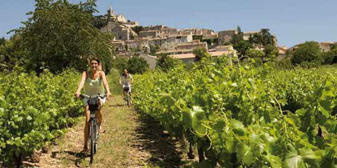 Genussvolle Radreisen durch die Provence