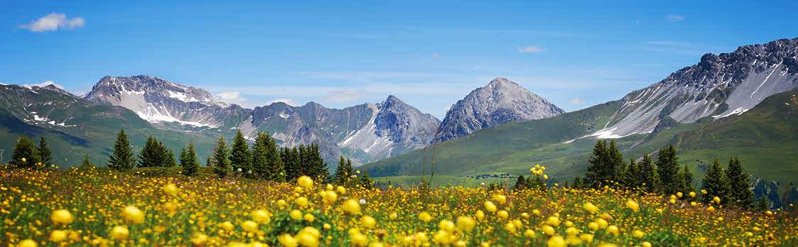 Glücksstein-Trail Arosa 1