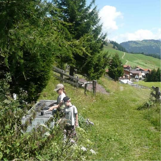 Erlebnisweg Klangwald tùn-resùn, Lohn 10