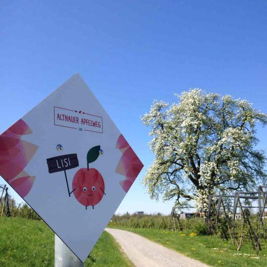 Vorschaubild zu Altnauer Apfelweg Thurgau